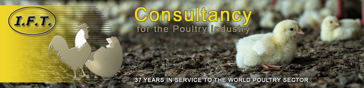 Welcome at the website of IFT Poultry